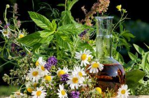 Homöopathie mit Kr�utern, gesunde K�che